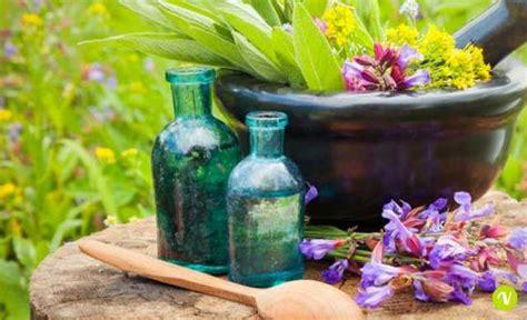 fiori do bach fiori di bach cosa sono e come si usano i rimedi floreali