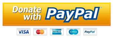 Search Pay With Paypal Paypal Pay Now Button Png Www Pixshark Images Galleries With A Bite