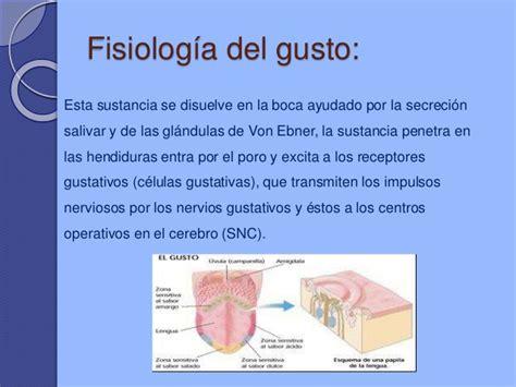 libro fisiologa del gusto fisiologia del oido gusto y olfato