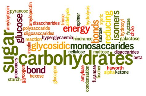 carbohydrates biochemistry carbohydrates structure and functions preparmy