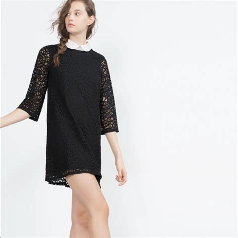 Collar Zara Dress zara dresses black lace dress with pan collar