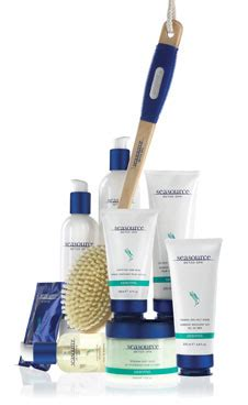 Arbonne Seasource Detox Spa Foaming Sea Salt Scrub by January 2012 The Arbonne Sistas Client Of The Month