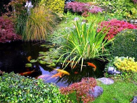 Garden Info Creating A Koi Pond Useful For Design Of Water Garden