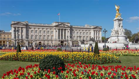 buckingham palace clri university of london international programmes