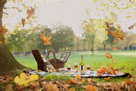 Tree For Home Decoration by Dukes Hotel Launches Gourmet Picnic Service In Green Park