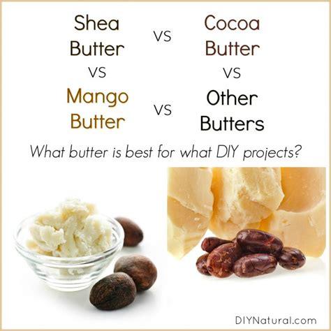 best shea butter shea butter vs cocoa butter vs mango butter which is best