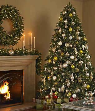 christmas tree rental for condos apartments