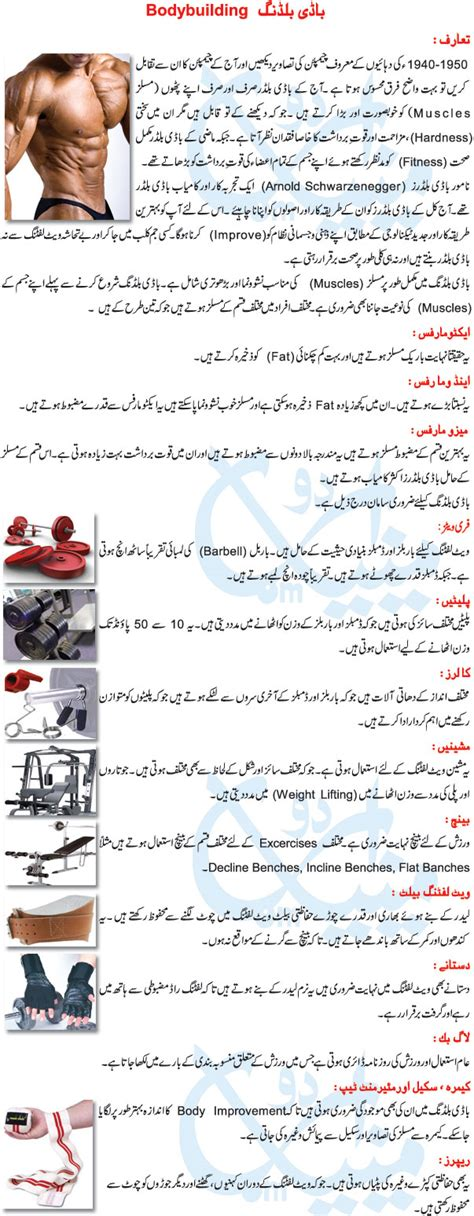building layout meaning in urdu diet chart for bodybuilding in urdu diet plan by dr