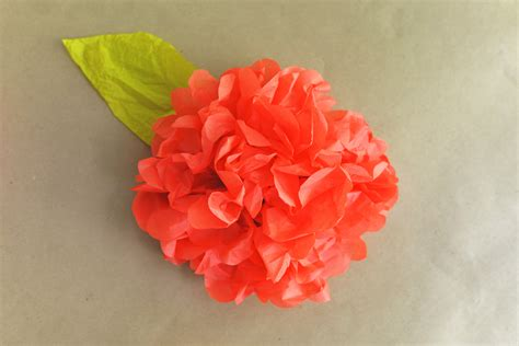 Tissue Paper Flowers - diy tissue paper flower backdrop
