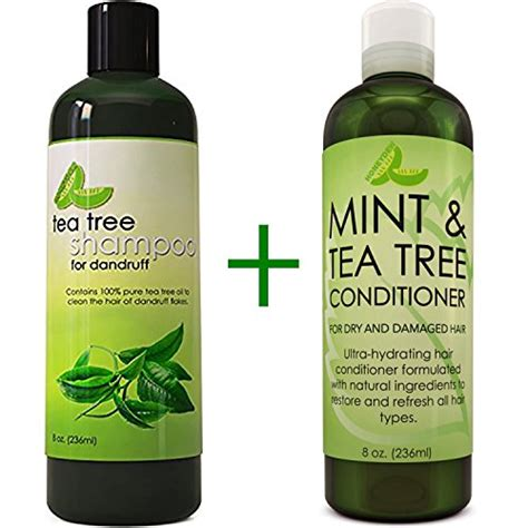 tea tree oil safe treatment for lice dandruff shoo and conditioner with tea tree oil argan
