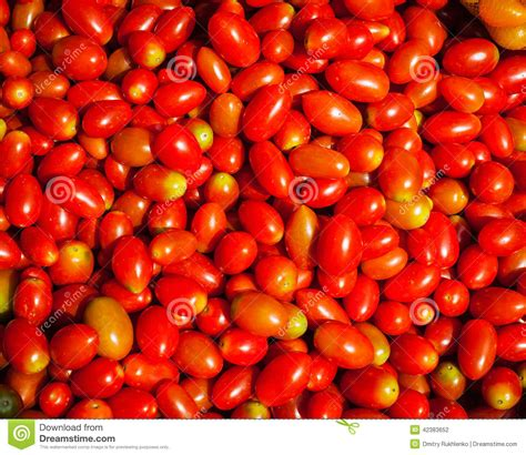 Sweet Tomato Gift Card - red small sweet tomatoes background stock photo image 42383652