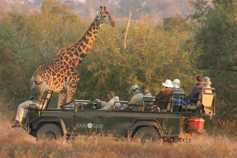 african safari euromic walthers destination business solutions south