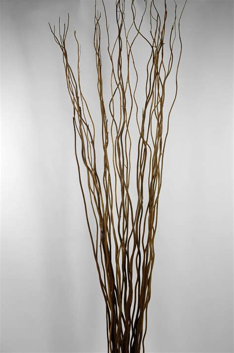 Decorating Decorative Tree Branches With Natural Curly Willow | natural curly willow branches 36 40in 11 branch bundle