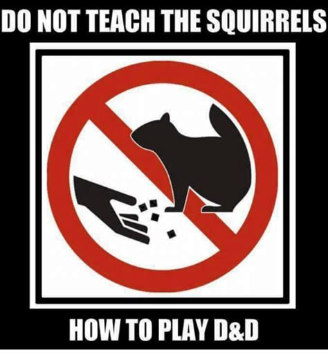 D Not do not teach the squirrels how to play d d meme on me me