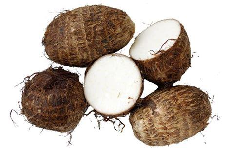 blognyaandrikiswantoro jenis jenis tanaman umbi