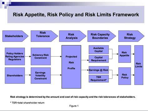 Search Risk Management Risk Tolerances S 248 Gning 02 Risk Management