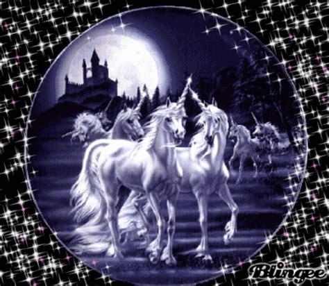 imagenes de unicornios para niñas unicornios fotograf 237 a 98117011 blingee com