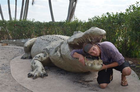 largest in the world crocodile bigger than lolong www imgkid the image kid has it