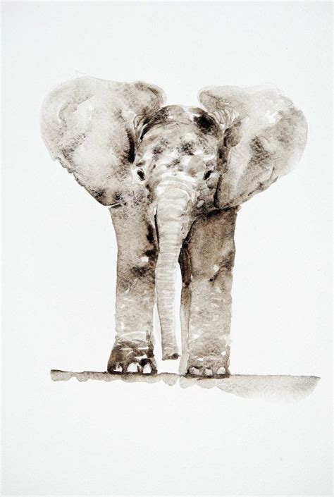 baby elephant watercolor painting by barbara luel elephant paintings elephant