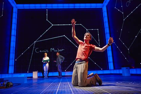 the curious incident of the in the nighttime book reviewed the curious incident of the in the time gielgud theatre