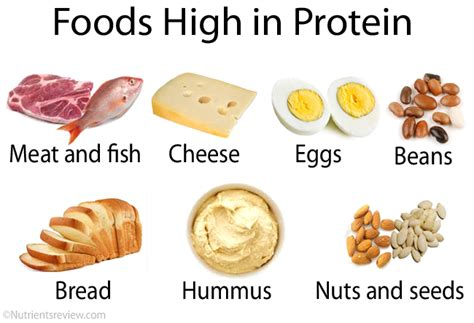 healthy fats and proteins all about protein