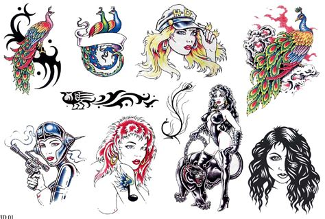 nz tattoo designs tattoos nz lawas