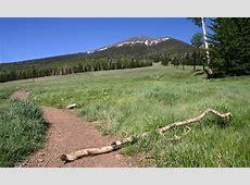 Flagstaff Arizona Summer Vacations & Activities - AllTrips Kayak Hotels