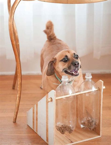 diy pit supplies 20 diy gifts for pets that will save you some