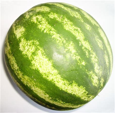 history of the watermelon is watermelon a fruit or vegetable origin of