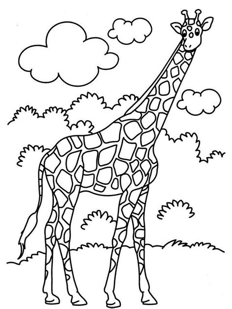 jumbo coloring pages coloring home