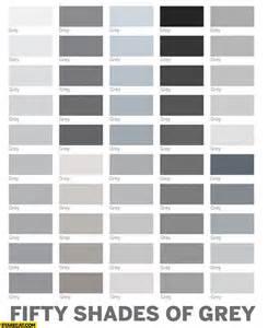 shade of gray fifty shades of grey colours starecat com