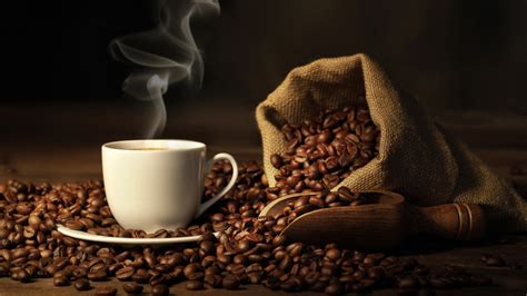 No Brow Coffee ? Brewing the Perfect Cup