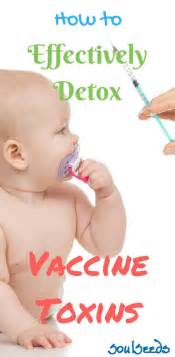How To Detox From Vaccines Baby by 8562 Best Parenting Tips Images On Parenting