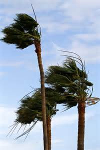 File gale force winds 8531419023 jpg wikimedia commons