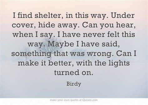 Shelter Birdy Essay by Birdy Lyric Quotes Quotesgram