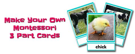 Montessori Three Part Card Template by How To Make Montessori 3 Part Cards My Organized Chaos