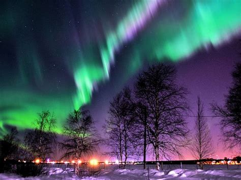 another name for northern lights do you these basic facts about autumn playbuzz