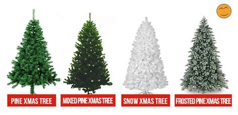 types of pine christmas trees www pixshark com images