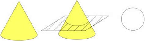 cross sectional area of cone cross sections geometry math concentration