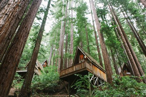 real treehouse magical redwood forest wedding molly leland green