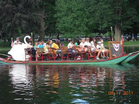 boston swan boats donation request pin swan boats on pinterest