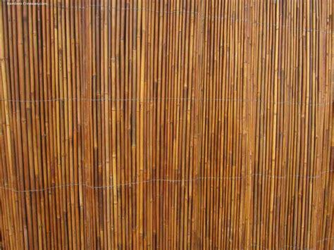 bamboo wall covering decor ideas