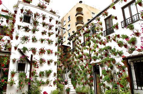 Los Patios Cordoba by Foto De Los Patios De C 243 Rdoba En C 243 Rdoba Ociogo