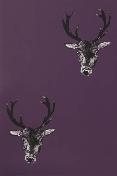 stag wallpaper grey stag wallpaper plum monument interiors