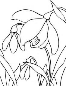 Galerry animal coloring pages pdf