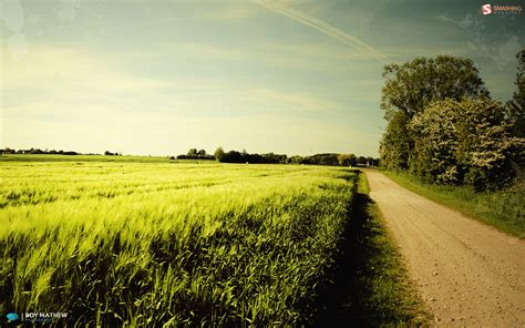nice summer day wallpapers nice summer day stock