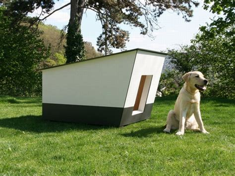 Dog house that is treat to watch and keeps your dog happy with cozy interiors