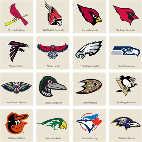 Bracket: What's The Best Bird-Named Sports Team? We Have a ...