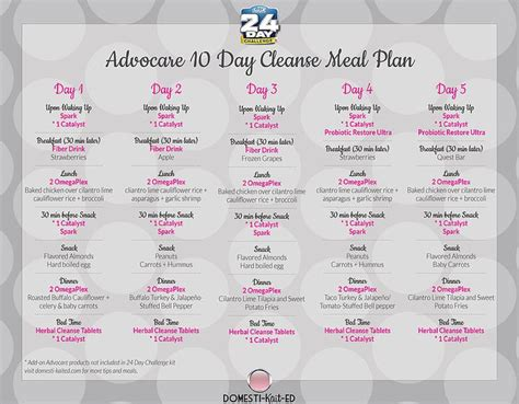 10 Day Detox Dinner Recipes by 100 Advocare Cleanse Recipes Days 1 10 Meals On