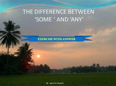 the difference between some and any exercise with